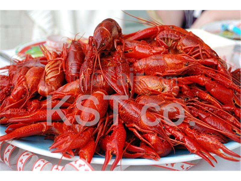 Shrimp, Prawn