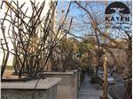نمونه کار حفاظ شاخ گوزنی تهرانپارس جنوبی 3