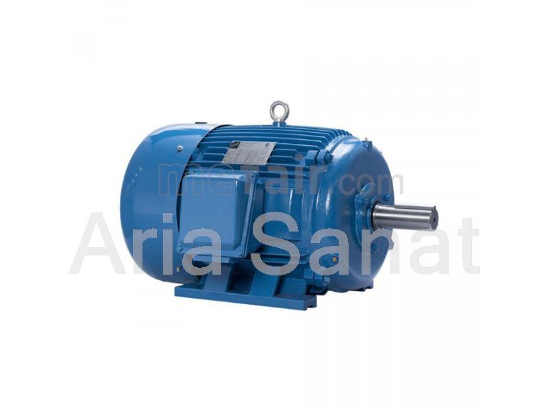 Motogen Electric motor