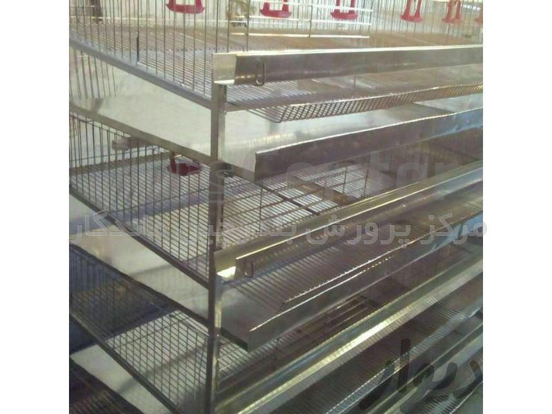 ساخت قفس بلدرچین تخم گذار