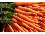عرضه هویج صادراتی
