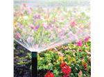 آبپاش PS Ultra هانتر آمریکا، آبیاری بارانی با آبپاش اسپری مخفی شونده فضای سبز