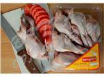 گوشت بلدرچین بسته بندی Amiran Star