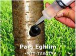 تزریق مستقیم مواد مغذی به تنه درختان