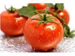 رب گوجه فرنگی با کیفیت مرغوب