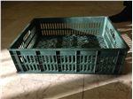 فروش سبدهای ١٥ کیلوی برای تولیدات ورمی کمپوست