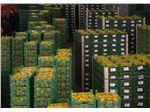 محافظ لبه مقوایی با روکش سفید برای صادرات میوه