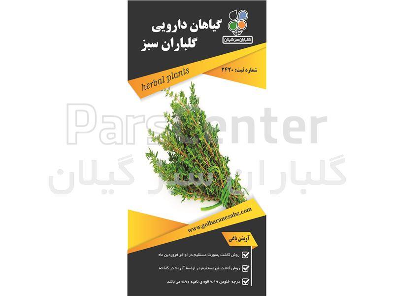گیاه دارویی آویشن باغی (Thymos)