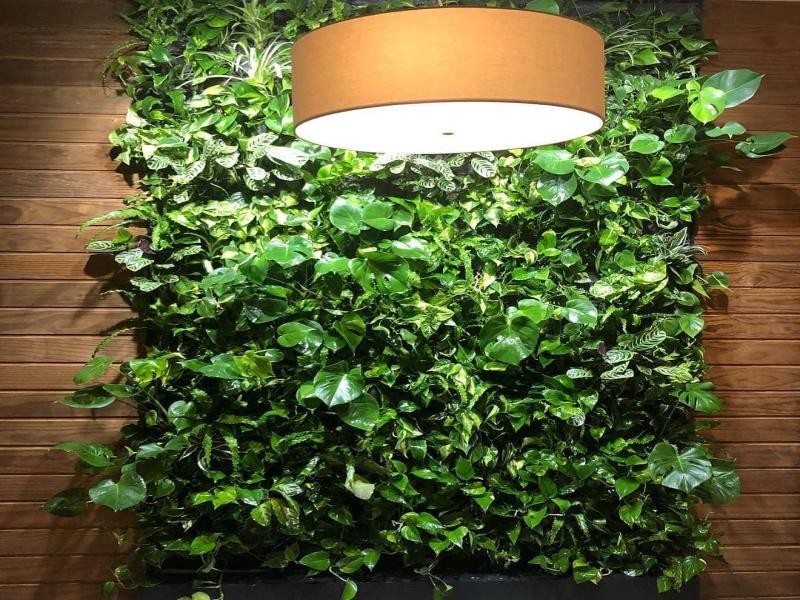 دیوار سبز المیچ