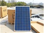 سلول خورشیدی 250وات ینگلی