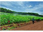 کنترل موتور آب کشاورزی با موبایل و sms