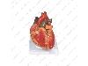 مولاژ قلب خارجی