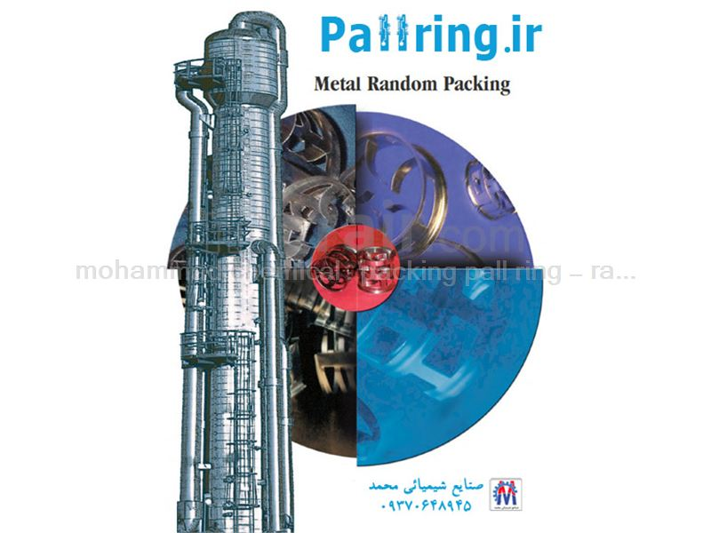 packing pall ring