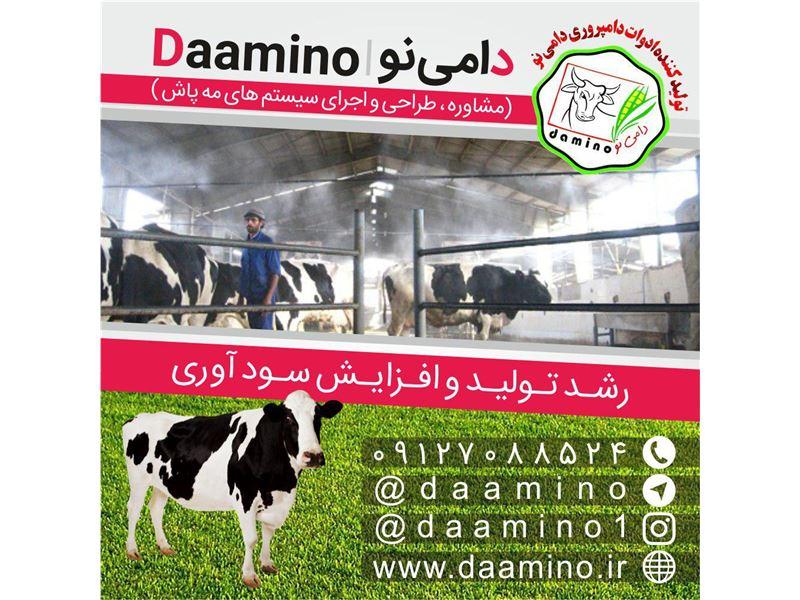 daamino
