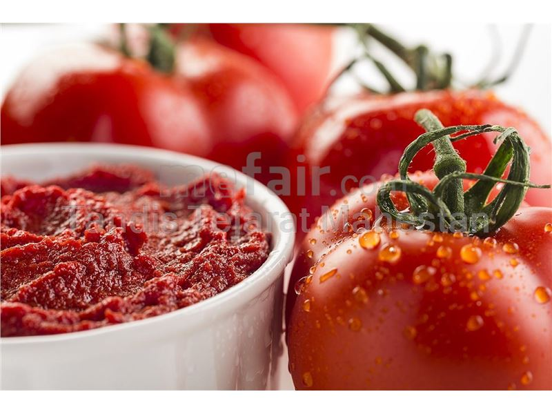 Export of tomato paste to Russia