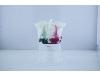 بستنی میوه ای فله ای و بستنی لیوانی و نیم کیلویی جهت سوپر مارکت ها