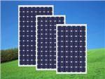 پنل خورشیدی کره ای مونوکریستال 320 وات shinsung