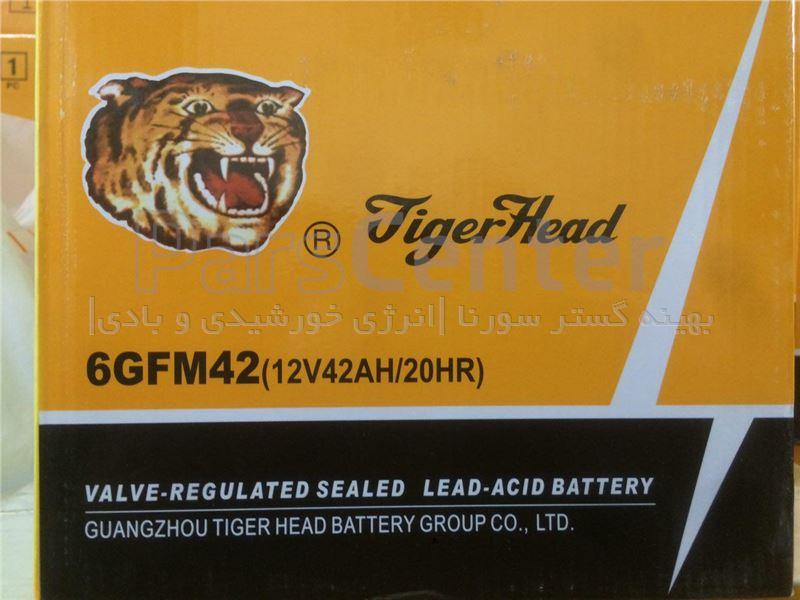 باطری سیلد لید اسید 42 آمپرساعت  Tiger Head