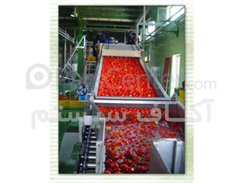 خط کامل تولید رب گوجه فرنگی