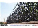حفاظ مدل شاخ گوزنی