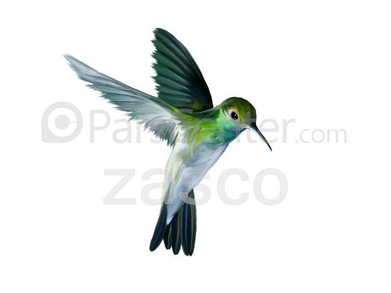 Z 2001  فراری دهنده پرنده به روش Sonic