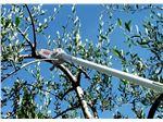 اره هرس-اره پنوماتیک بادی باغبانی-اره هرس شاخه های درختان مدلSKY ایتالیا