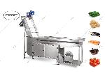دستگاه شستشو مکانیزه سبزیجات