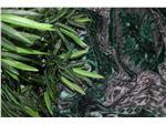 پتو مینک سوپر، طرح قالیچه شکوفه