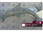 طراحی و ساخت ماکت تبلیغاتی دلفین