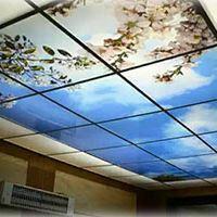 پلی کربنات+آسمان مجازی