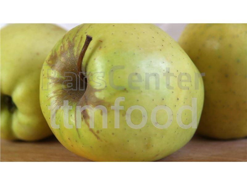 پوره سیب اسپتیک TTMFOOD