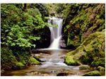 پوستر آبشار و جنگل