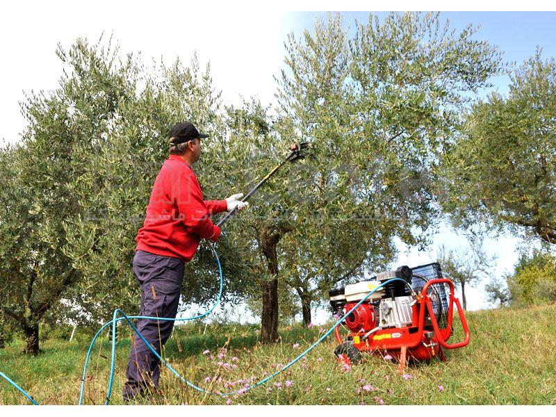 دستگاه زیتون چین-زیتون چین پنوماتیک بادیLISAM ITALY مدلMG MAGNESIUM