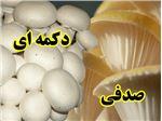 بذر قارچ خوراکی با واریته های گوناگون