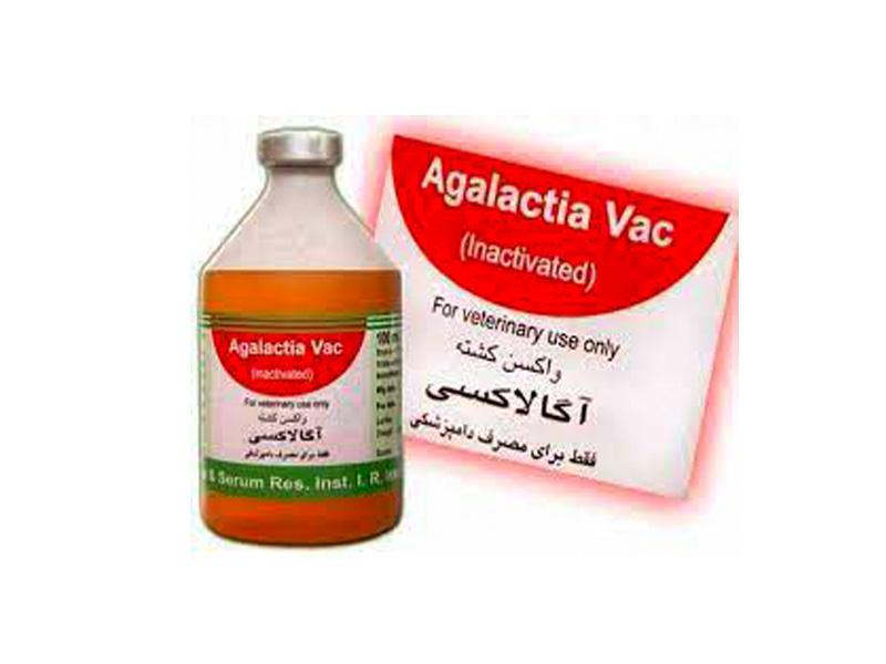 واکسن آگالاکسی