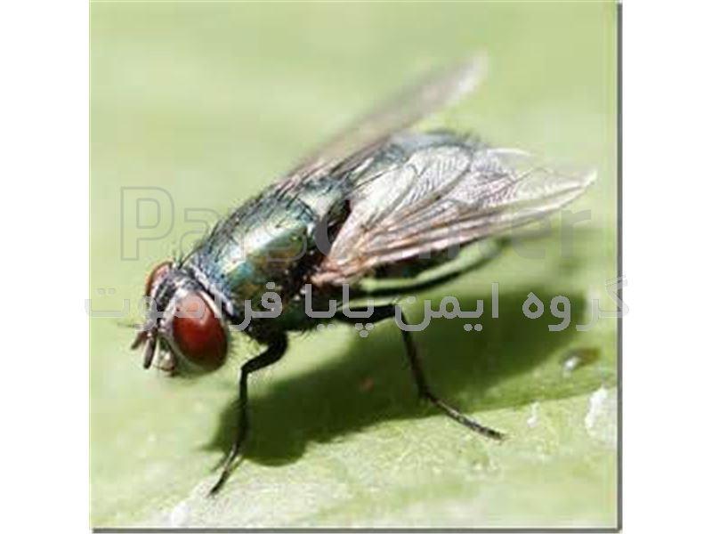 پرده هوا دور کننده حشرات