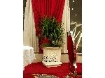 گلدان کلاسیک رومی/ کد CS60-2