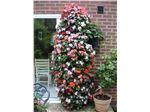 گلدان طبقاتی مخصوص باغ و فضای سبز