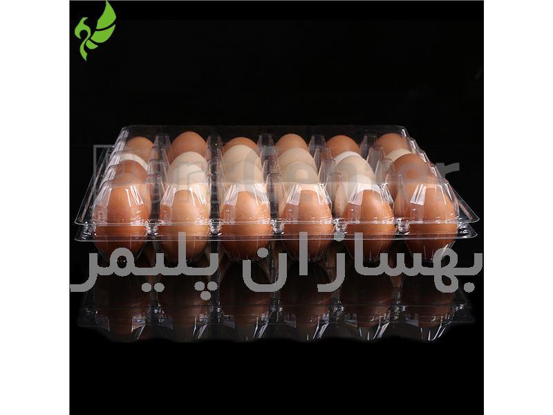 شانه تخم مرغ پلاستیکی 6 تایی