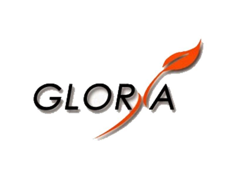 فروشگاه اینترنتی گلوریا / www.Gloriastore.ir