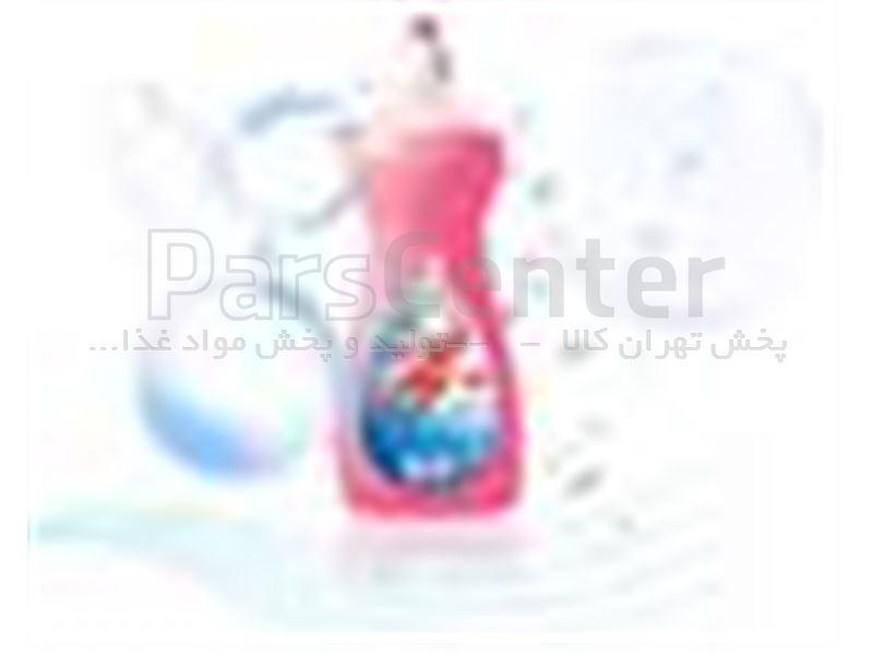 مایع ظرفشویی گلی