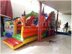 Inflatable play equipment code 14