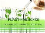 فروش هورمونهای گیاهی3