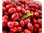 Cornelian Cherry Juice Concentrate