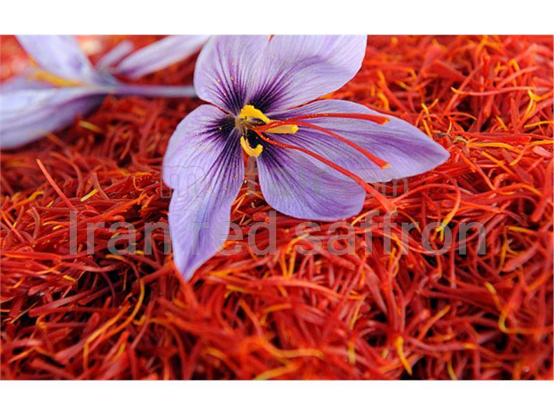 Pushal Negin Saffron