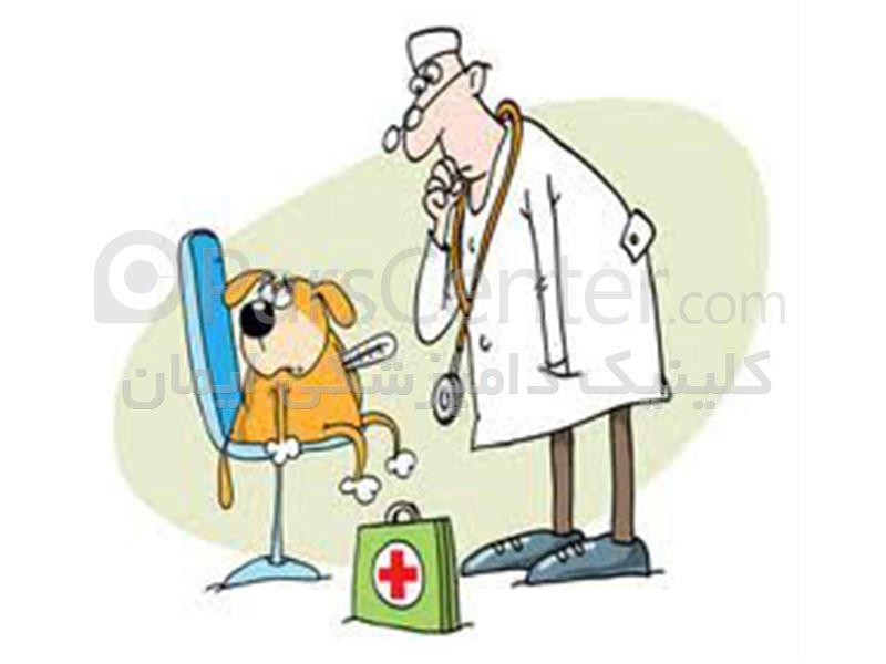صدور شناسنامه بهداشتیhealth certificate