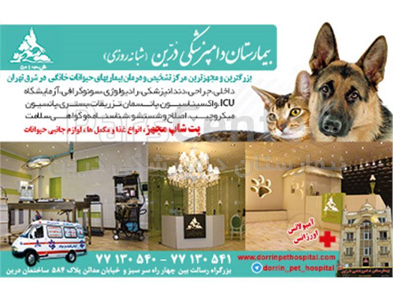 آزمایشگاه دامپزشکی حیوانات خانگی درین