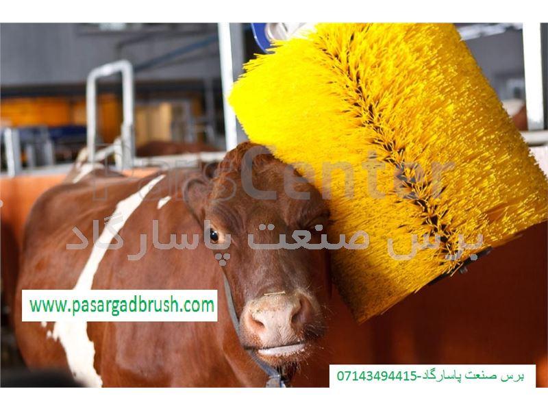 تولید برس  آرامش دهنده گاو