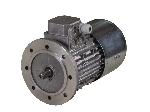 موتور الکتریکی جرثقیل سیم بکسلی