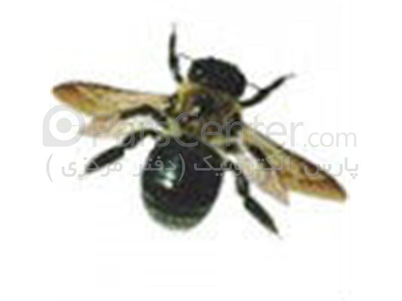 دستگاه چند منظوره 315 دفع کننده حشرات و حیوانات موذی